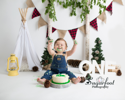 Woodland Cake Smash Session By Sugarfoot Photography St Louis Photographer